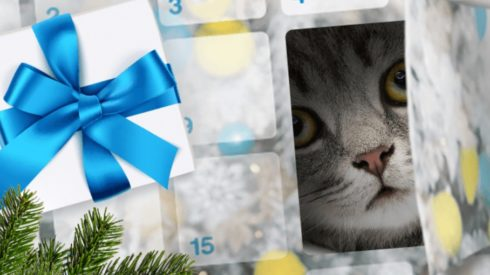 Qualipet Adventskalender